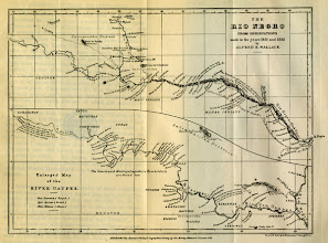 Photo: Alfred Russel Wallace's map of the Rio Negro river in Brazil, a major tributary of the Amazon as published by Wallace in the Journal of the Royal Geographical Society in 1853. Copyright George Beccaloni