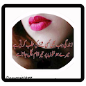 Urdu Poetry Design Ideas icon