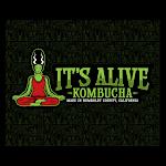 It's Alive Kombucha Hibiscus Guava