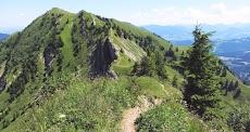Blick Buralpkopf Weg Gündleskopf zum Buralpkopf Hindelanger Berge Nagelfluhkette Allgäu