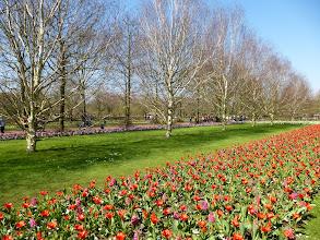 Photo: The park encompasses 79 acres