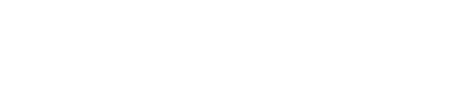 Blogging Wizard Logo