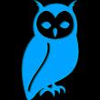 Hoot icon