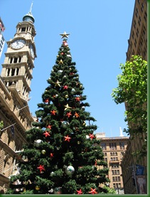 Christmas Tree, Martin's Place Sydney