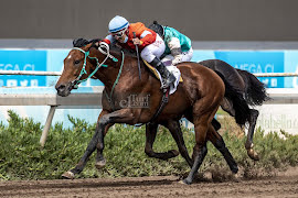 Gran Relato (Lookin At Lucky) brilló en Handicap (1600m-Arena-CHS).