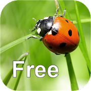 App Icon for Nature Free - North America App in Czech Republic Google Play Store