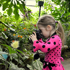 Young photographer by Anna Cole - Babies & Children Children Candids ( girl, green, camera, photographer, pink, young girl, young photographer, flowers, toddler, garden, young,  )