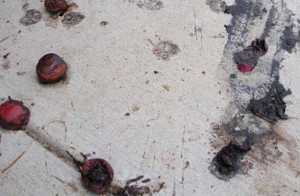 Photo: Black pulpy plums, fallen from a tree on West Valerio St, Santa Barbara, California, September 12, 2012.