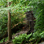Stairway to Somewhere by Missy Roberts - Landscapes Forests ( greenville, adventure, stairs, forrest, green, somewhere, walk, up,  )