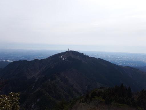 野登山より高く