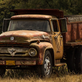 Farm Truck by Jodi Olson - Transportation Automobiles ( truck, country )