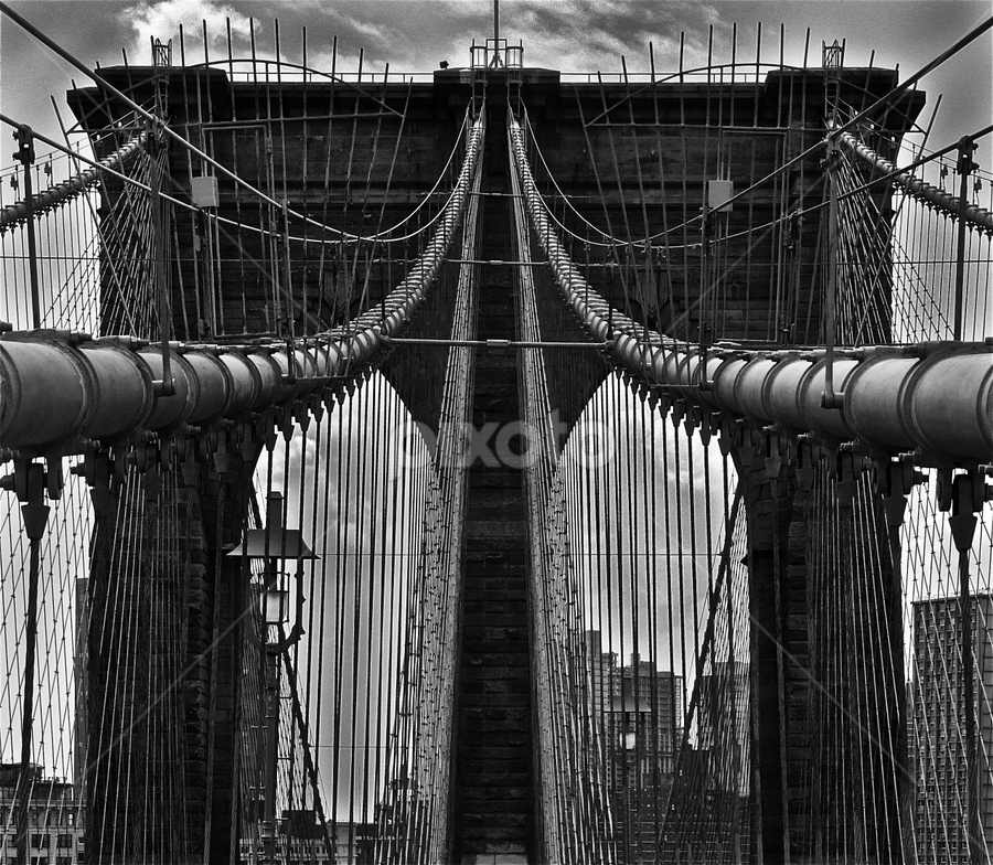 Brooklyn Bridge by Martha van der Westhuizen - Buildings & Architecture Bridges & Suspended Structures ( symmetrical, vertical lines, black & white, dramatic, pwcbuilding, construction )