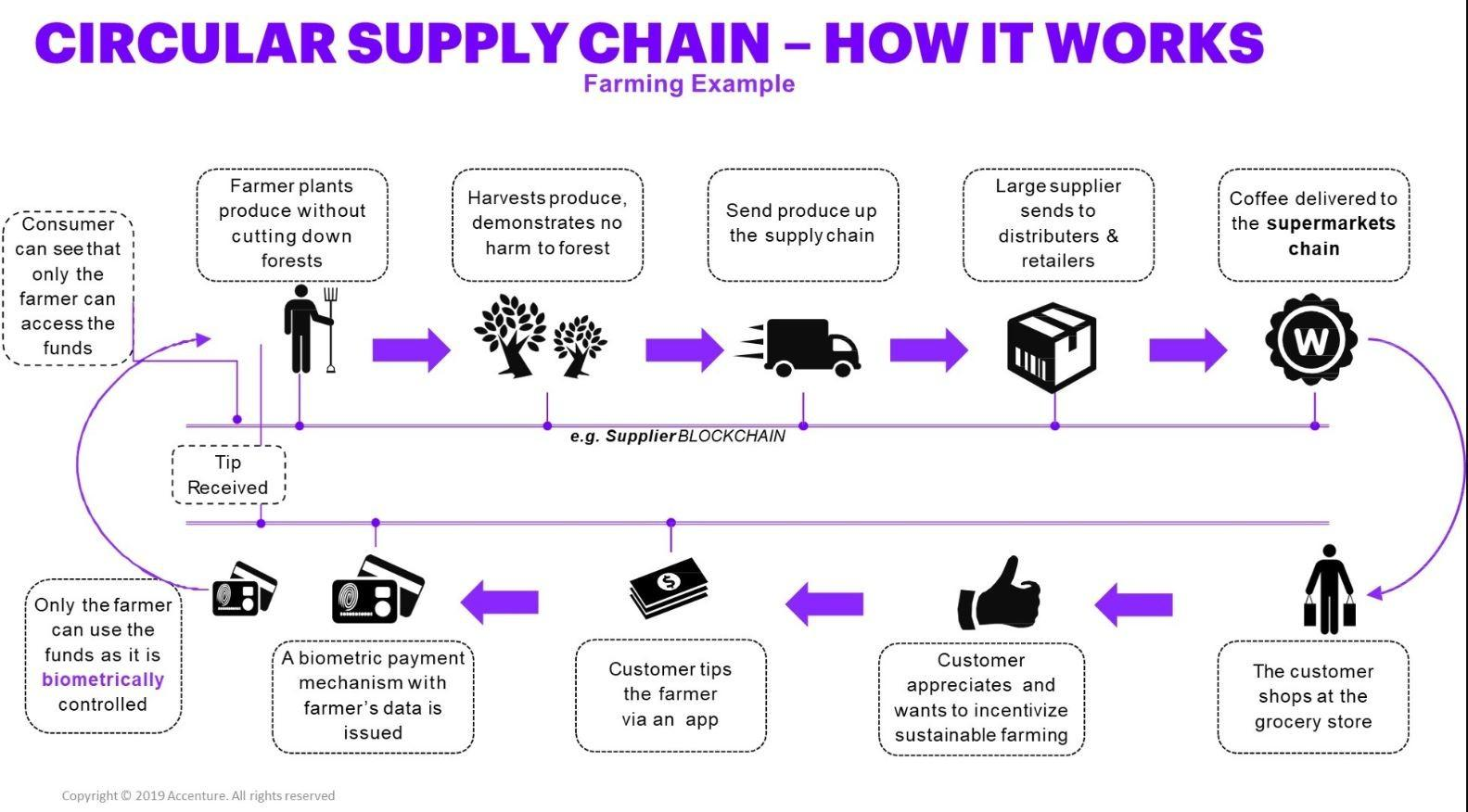 Circular Supply Chain