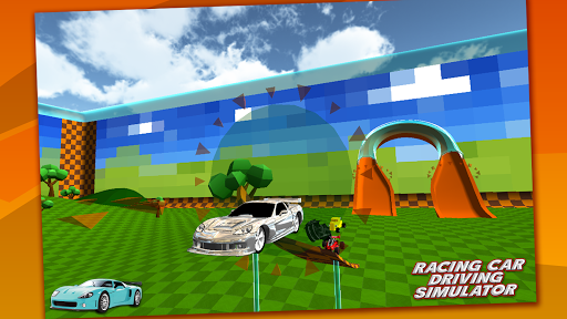 Multiplayer Racing Simulator 1.3 4