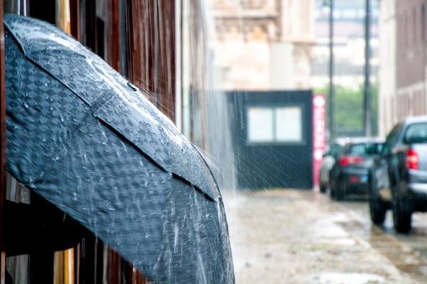 Un signor ombrello di emanuela_terzi