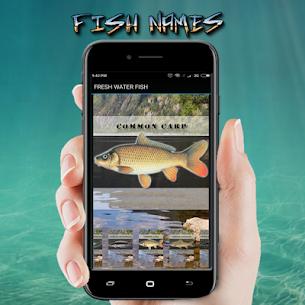 FISH NAMES 3