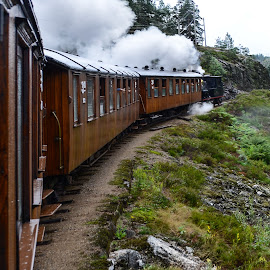 Train in Norway by Marcin Frąckiewicz - Transportation Trains ( train in norway )