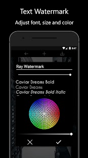 Ray Watermark - Watermark with QR, Logo, Text Screenshot