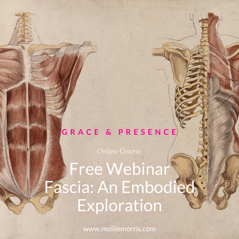 Click here to join the Free Fascia Webinar