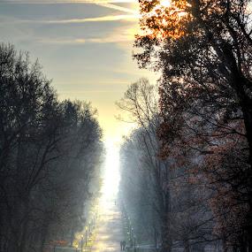 Maksimir park by Zeljko Kliska - City,  Street & Park  City Parks ( winter, nature, park, sunset, city,  )