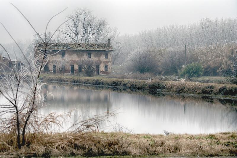 Paesaggio in Febbraio di Fotodiale