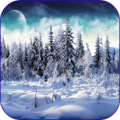 Snow & Winter Wallpapers