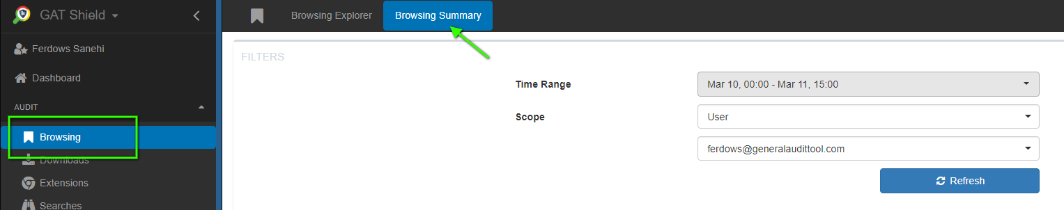 The Browsing Summary area shows you an in-depth analysis of the users browsing activity for a selected time range.