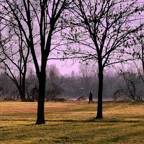 Walker by Riccardo Lazzari - City,  Street & Park  City Parks ( park, sunset, walker, po, river )