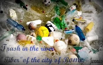 Photo: chemische Produkte aus fossilen Kohlenwasserstoffen sind die Hauptursache für das Müllproblem der Zivilisation.  Ponte Garibaldi