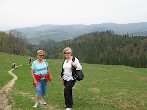 Photo: D4300526 Kroscienko - spacer na zbocza Wysokiej
