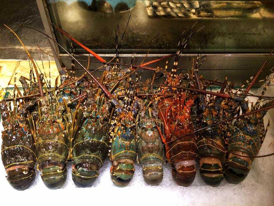 Không gian tuyệt vời để thưởng thức buffet hải sản tôm hùm Tp.HCM