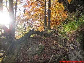 Photo: IMG_3968 sul 607 torna il sole