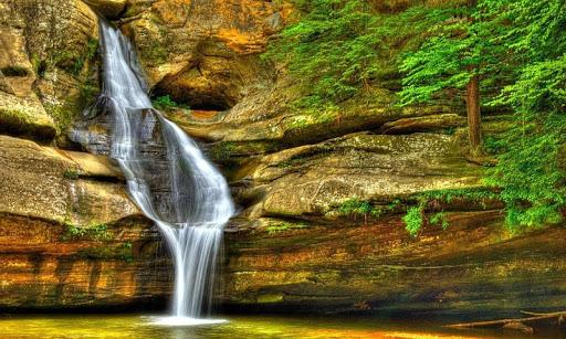 自然の風景のパズル