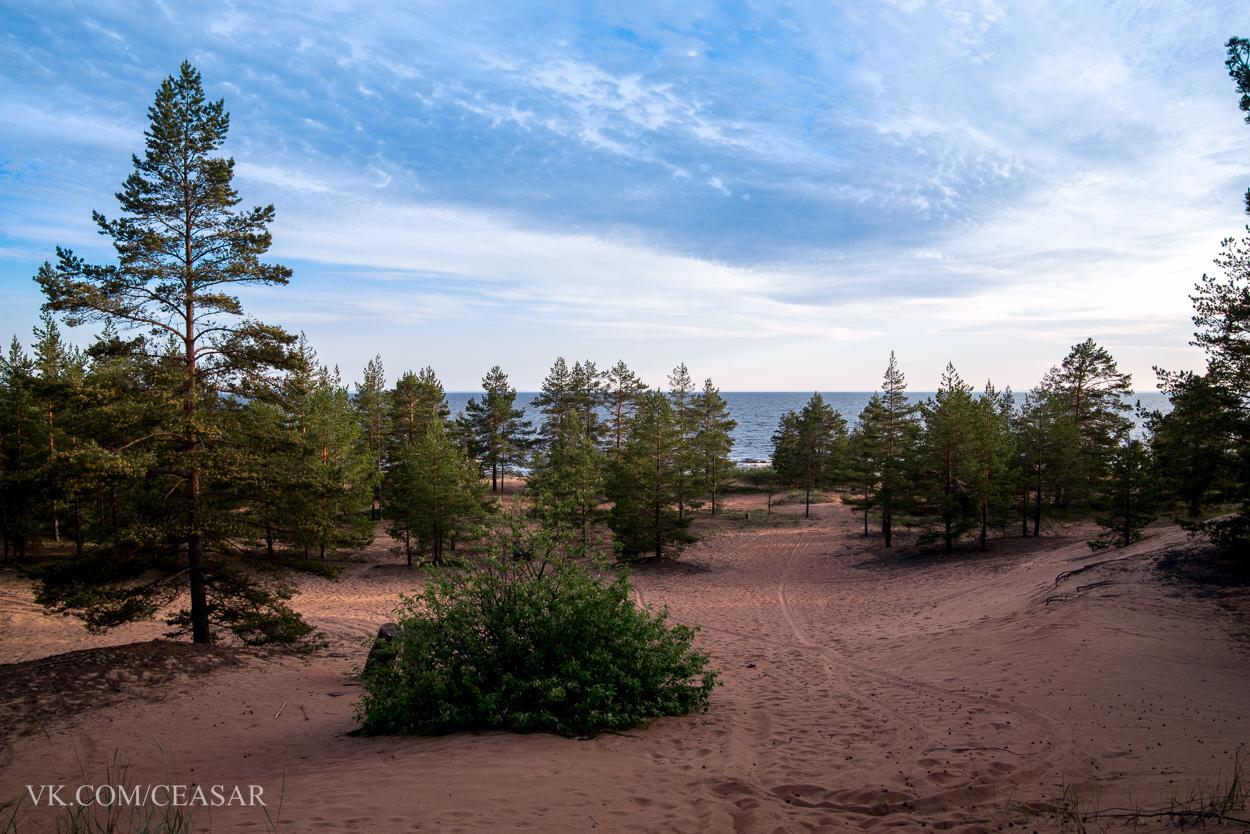 Северный берег Ладожского озера