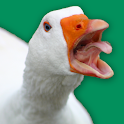 Angry Goose Simulator: Goose Rampage Game icon