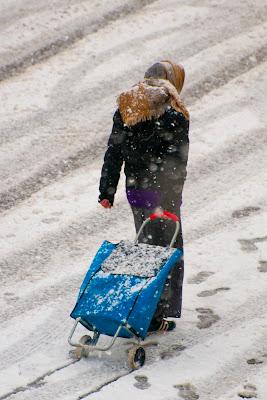 spesa sotto la neve di Luporosso
