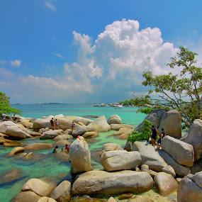 by Boy De - Novices Only Landscapes ( #beach )