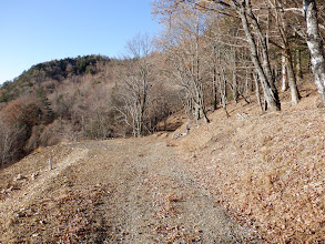 登山道と合流する