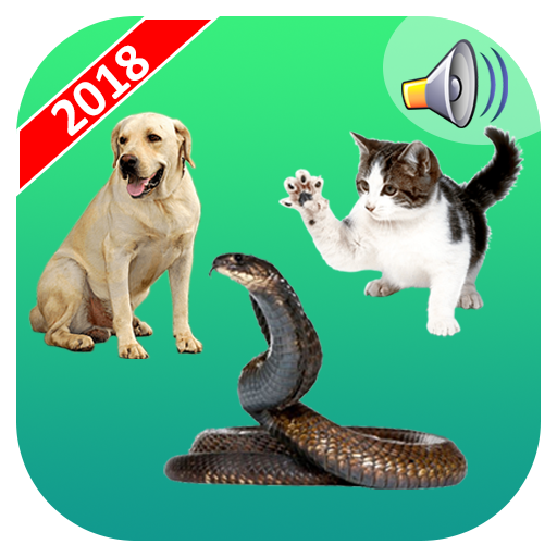 Real Animal Sounds Funny Prank Android APK Download Free By A.L Studio