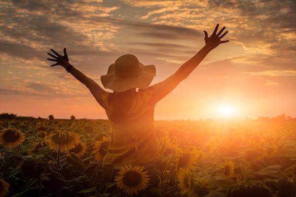 Welcome to the sun di Nico Angeli Photography