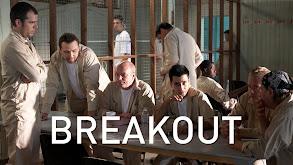 Breakout thumbnail