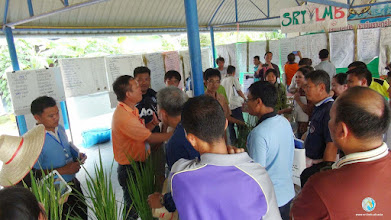 Photo: SMART Farmers presenting their experimental results, TOT 4, Tron, Uttaradit