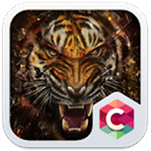 Wild Tiger Big Cats Animal Theme
