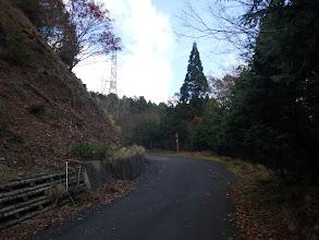 暫くは林道を歩く