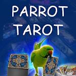 Parrot Tarot card Reading Fortune teller Astrology Icon