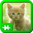Puzzles: Kittens