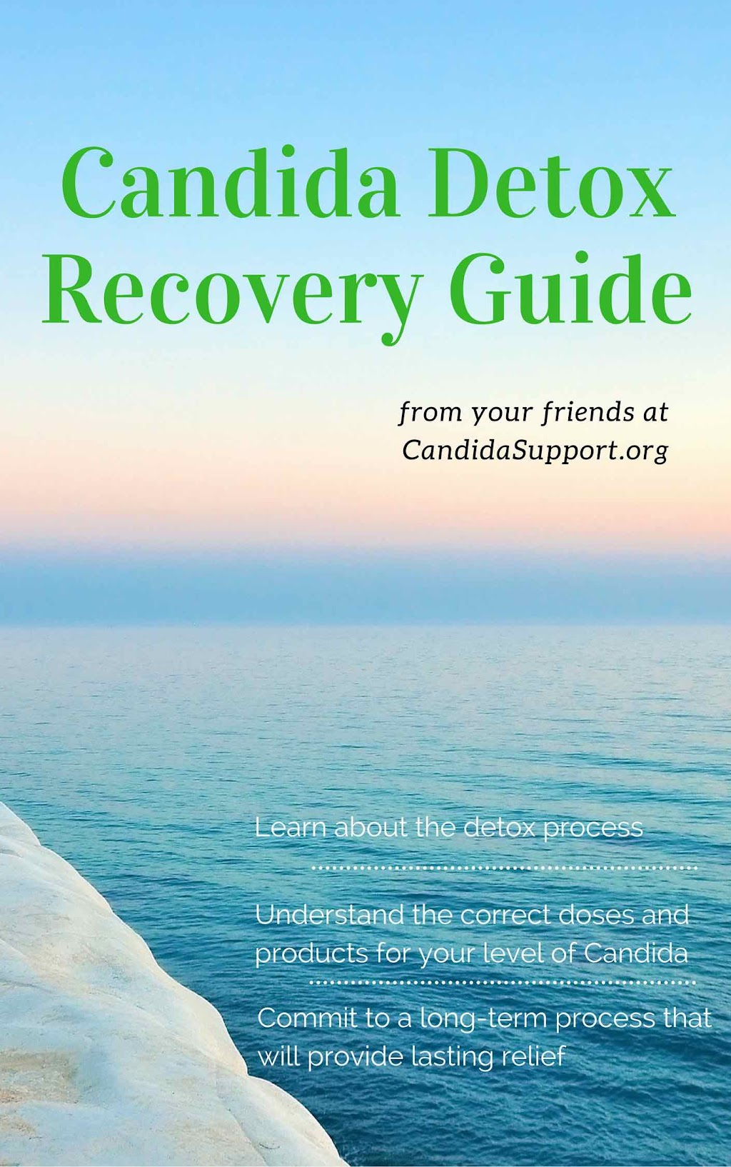 Free Candida Recovery Guide
