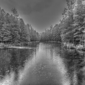 The river flowing from the Big Spring Kitchikipi by Patti Pappas - Landscapes Waterscapes ( water, michigan, river )