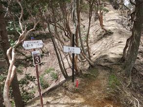 大岩谷・奥の谷分岐