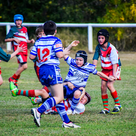 One for the team by Linda Taylor - Sports & Fitness Australian rules football ( esk, queensland, football, australia, junoirs, sports, children, squashed, tackling, tackle, people,  )